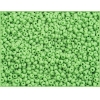 Seedbead 10/0 Matte Opaque Light Green